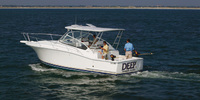 Luhrs 31 Open - 2009 , 145 000 € VAT paid