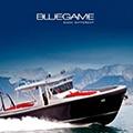 bluegame
